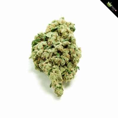 "Neu: firstclass Cannabis Indoor CBD ""green one"" 1.7g - 10g"