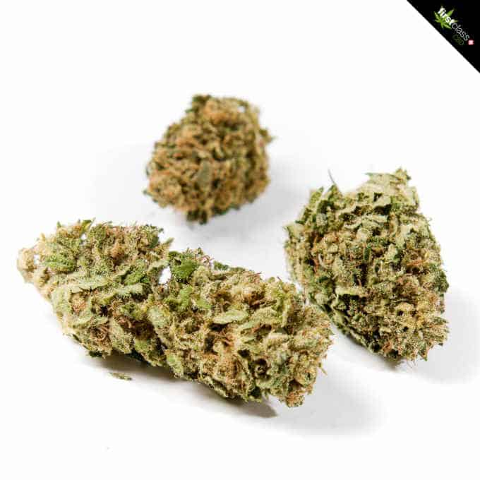 "Swiss ""firstclass"" CBD Cannabis Indoor Blüten ""Orange One"" 2.0g - 24.0g 1"