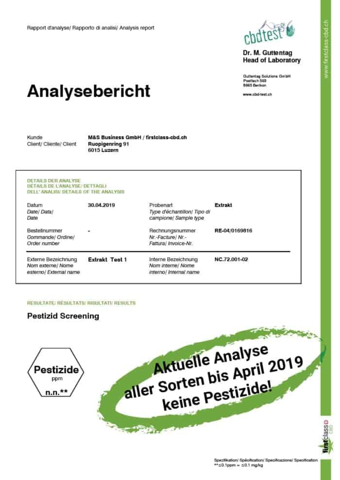 analysebericht