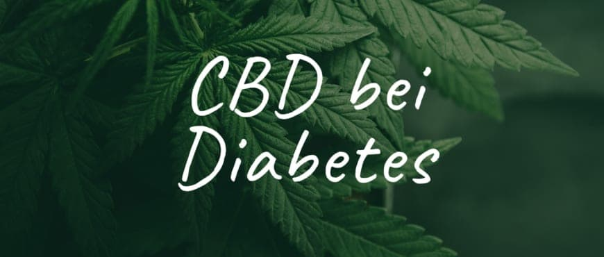 Polyneuropathie: Symptome mit CBD Cannabis behandeln?