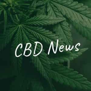 Cannabis CBD Kaufen