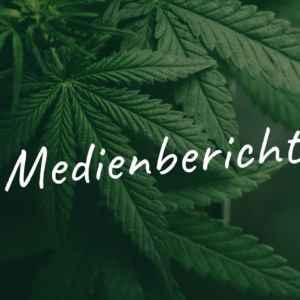 Cannabis Hanf Magazin