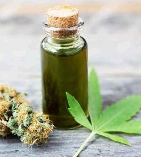 Eigene Cannabis Tinktur herstellen